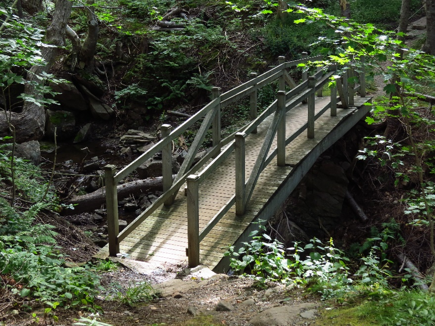 Foot bridge on Gampo Abbey's grounds
