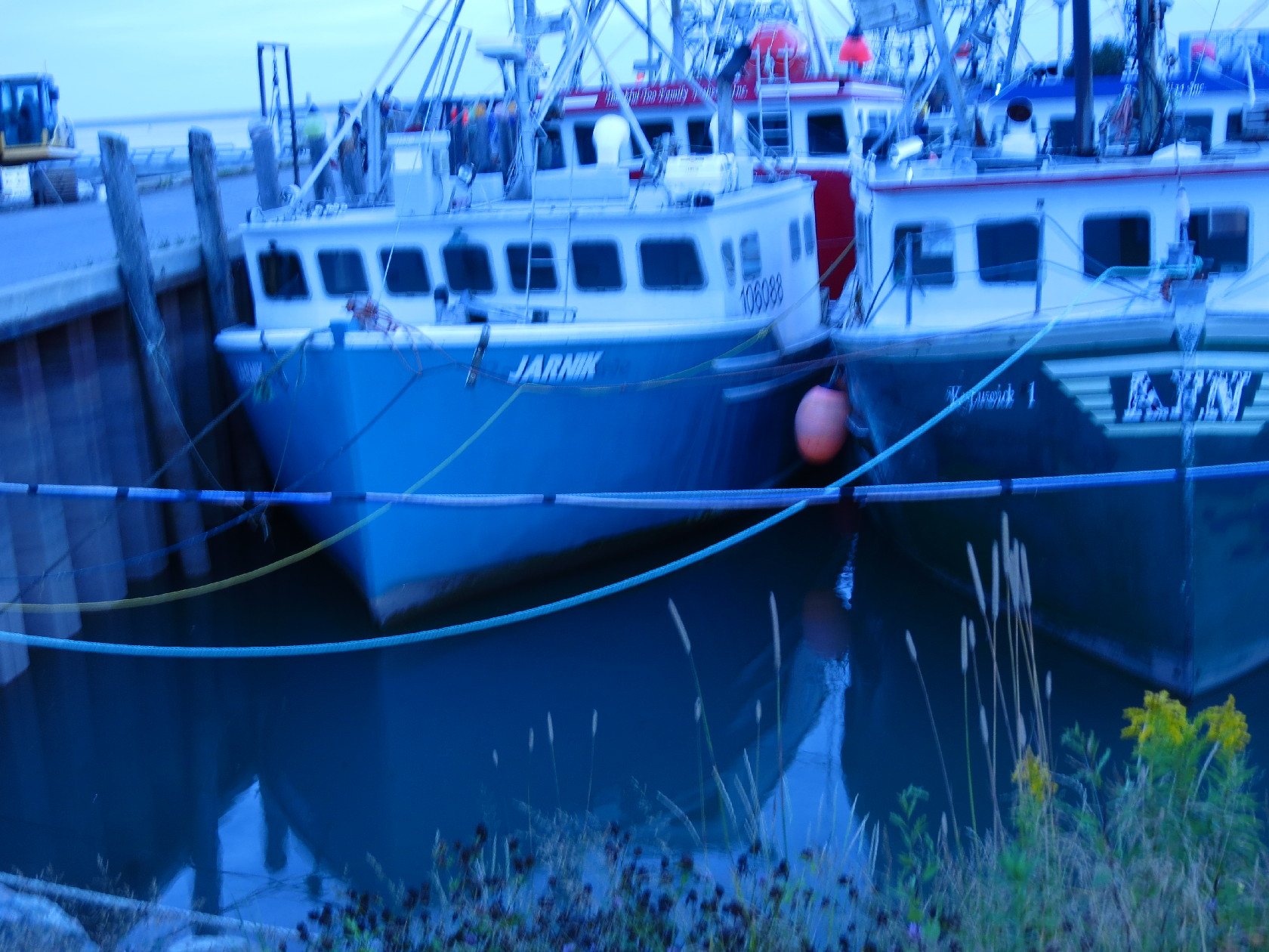 High tide, Alma dock