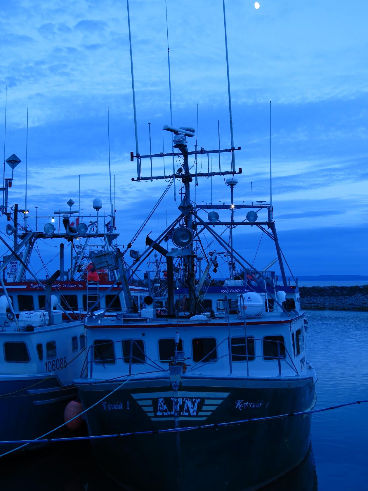 Lobster boats risen as tide comes in, Alma