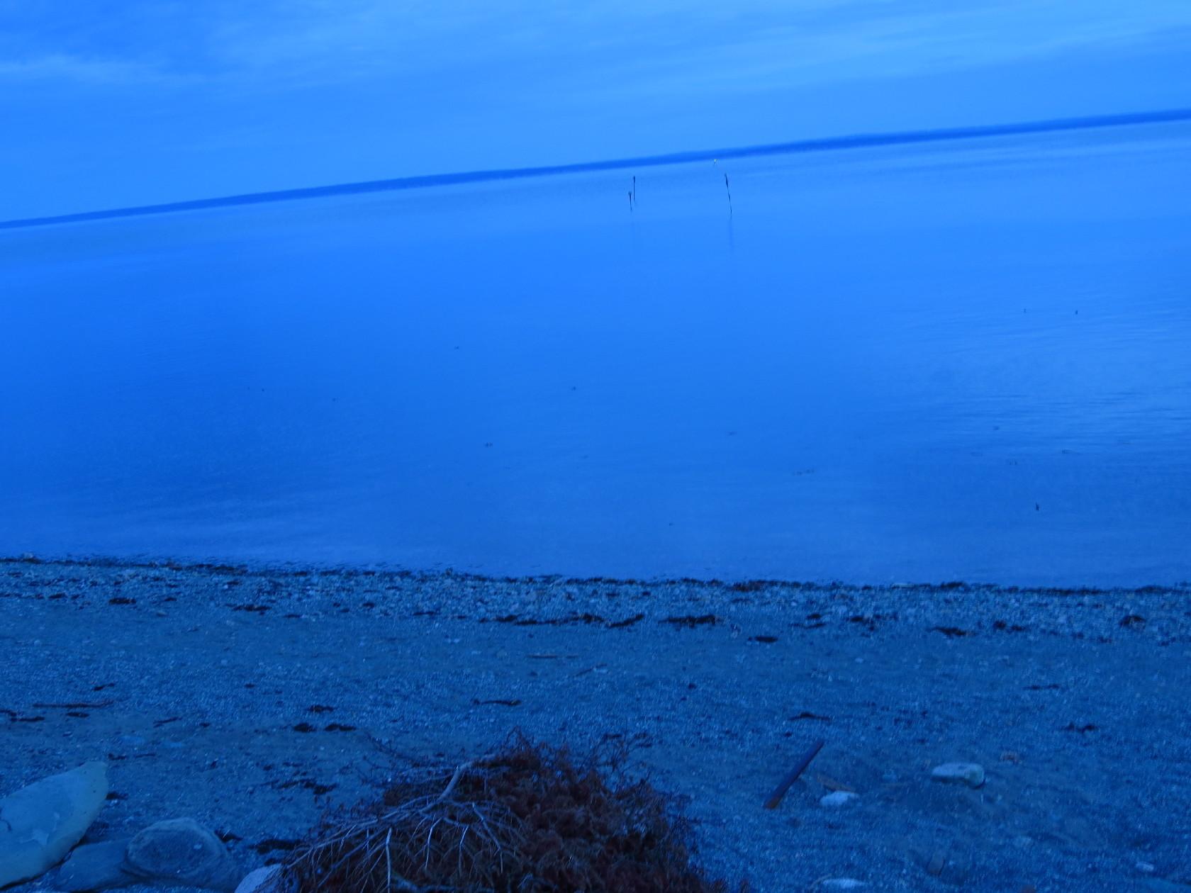 Tide has risen. Poles almost submerged, Alma