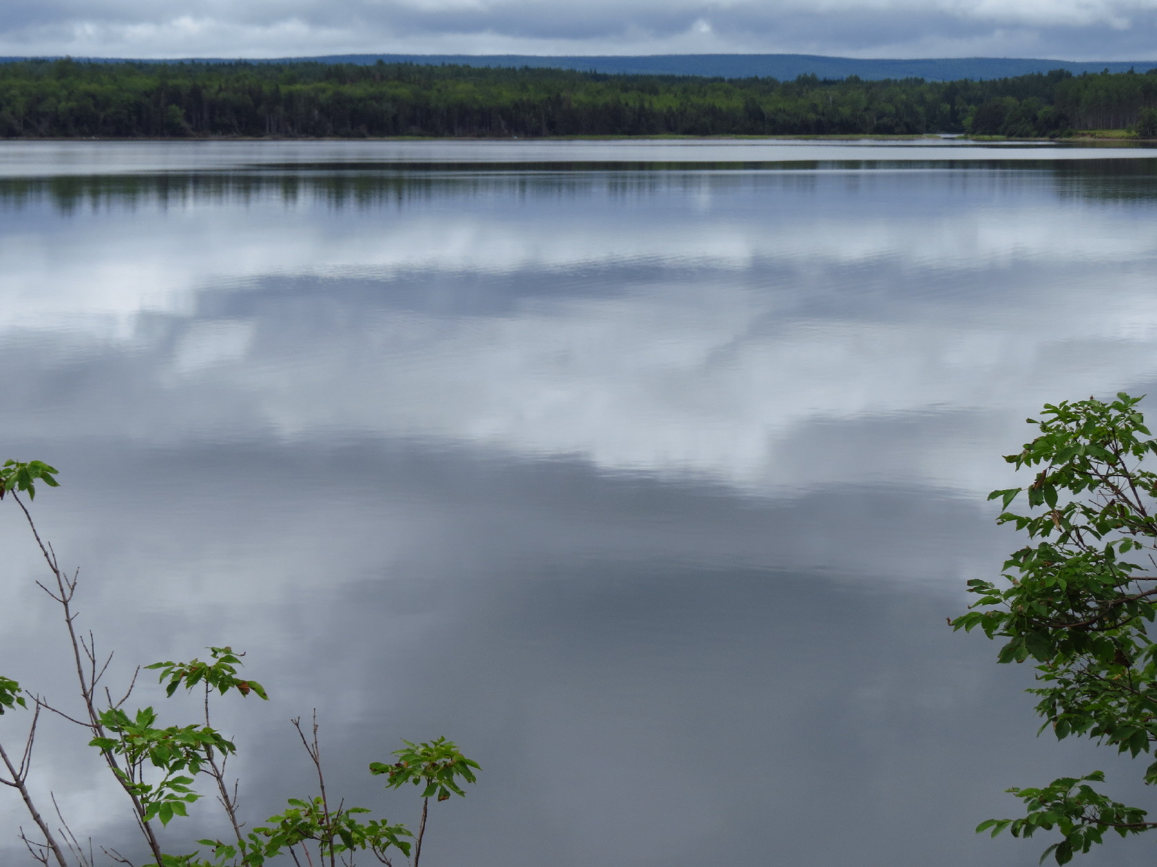 Cloud reflections, N. Sidney vicinity, NS