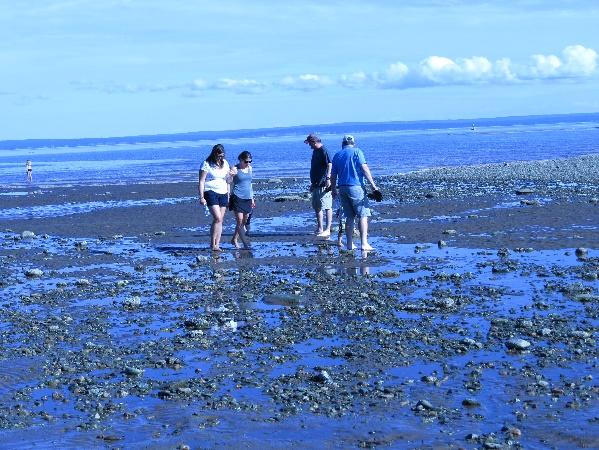 Letting their children play at the water's edge as the tide rolls in, Alma