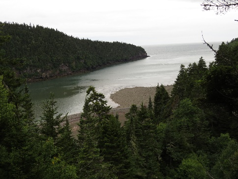 Point Wolfe river estuary at low tide, Fundy National Park