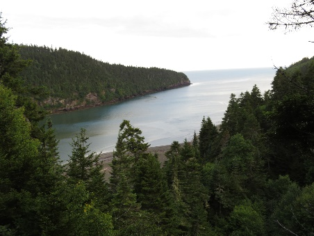 Point Wolfe river estuary at high tide, Fundy National Park