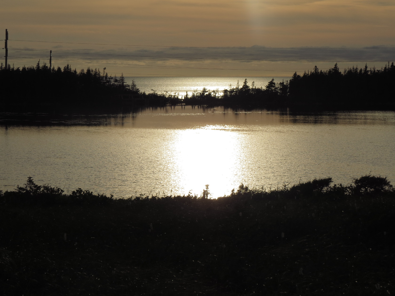 The lake in gold with sunset, Berry Head Pond, NL