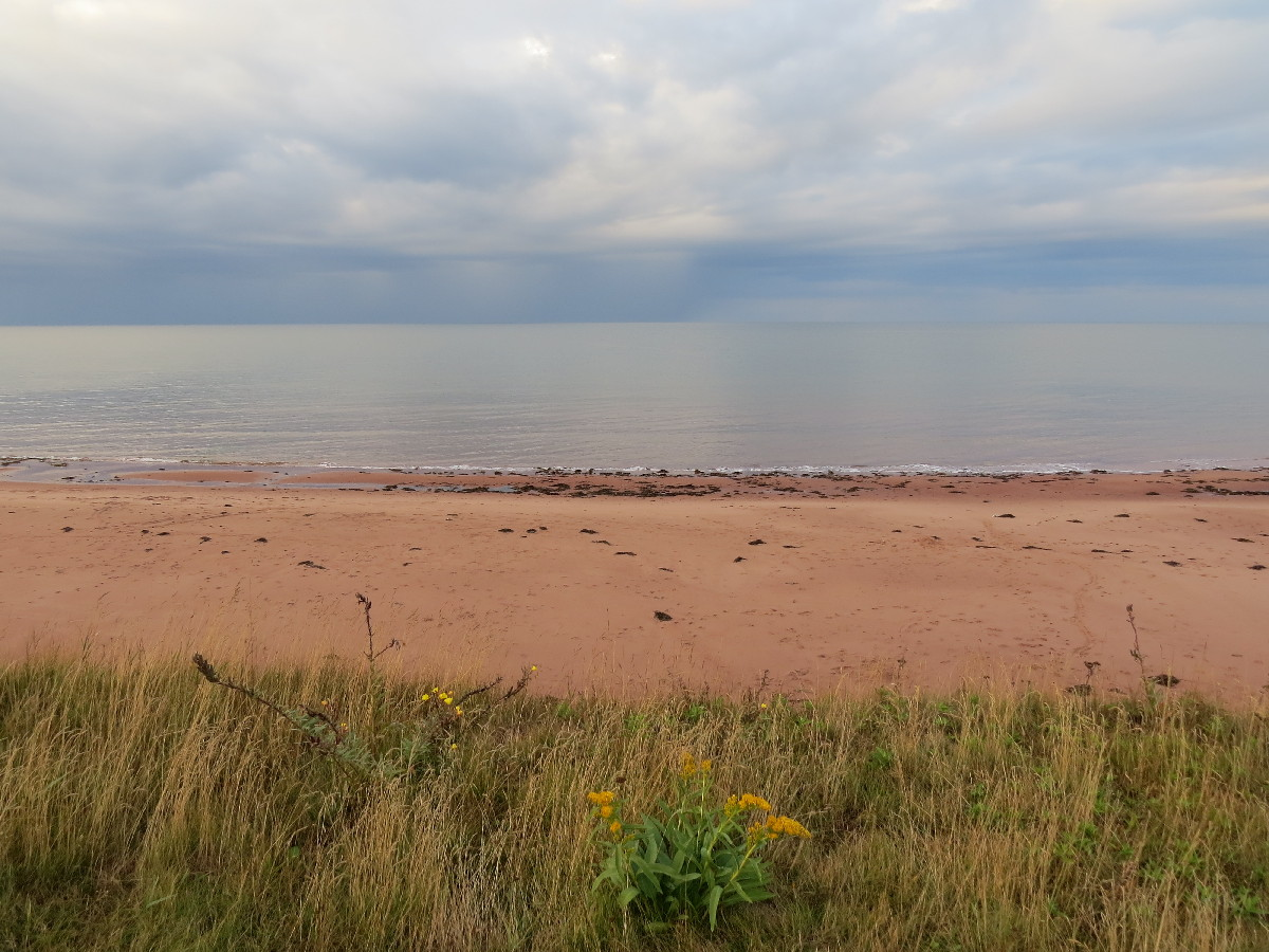 Red beach beauty, Campbell's Cove, PEI