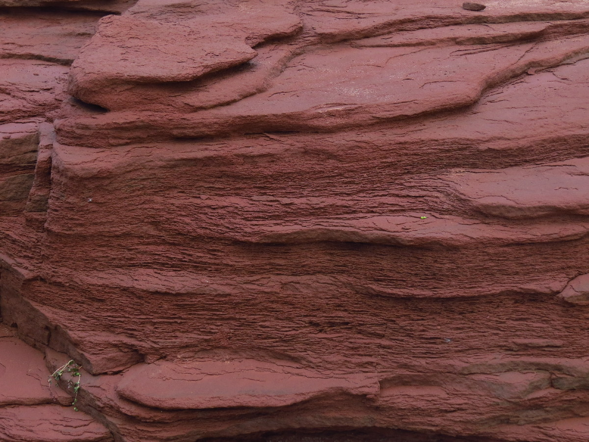 Red sandstones on beach, Campbell's Cove, PEI