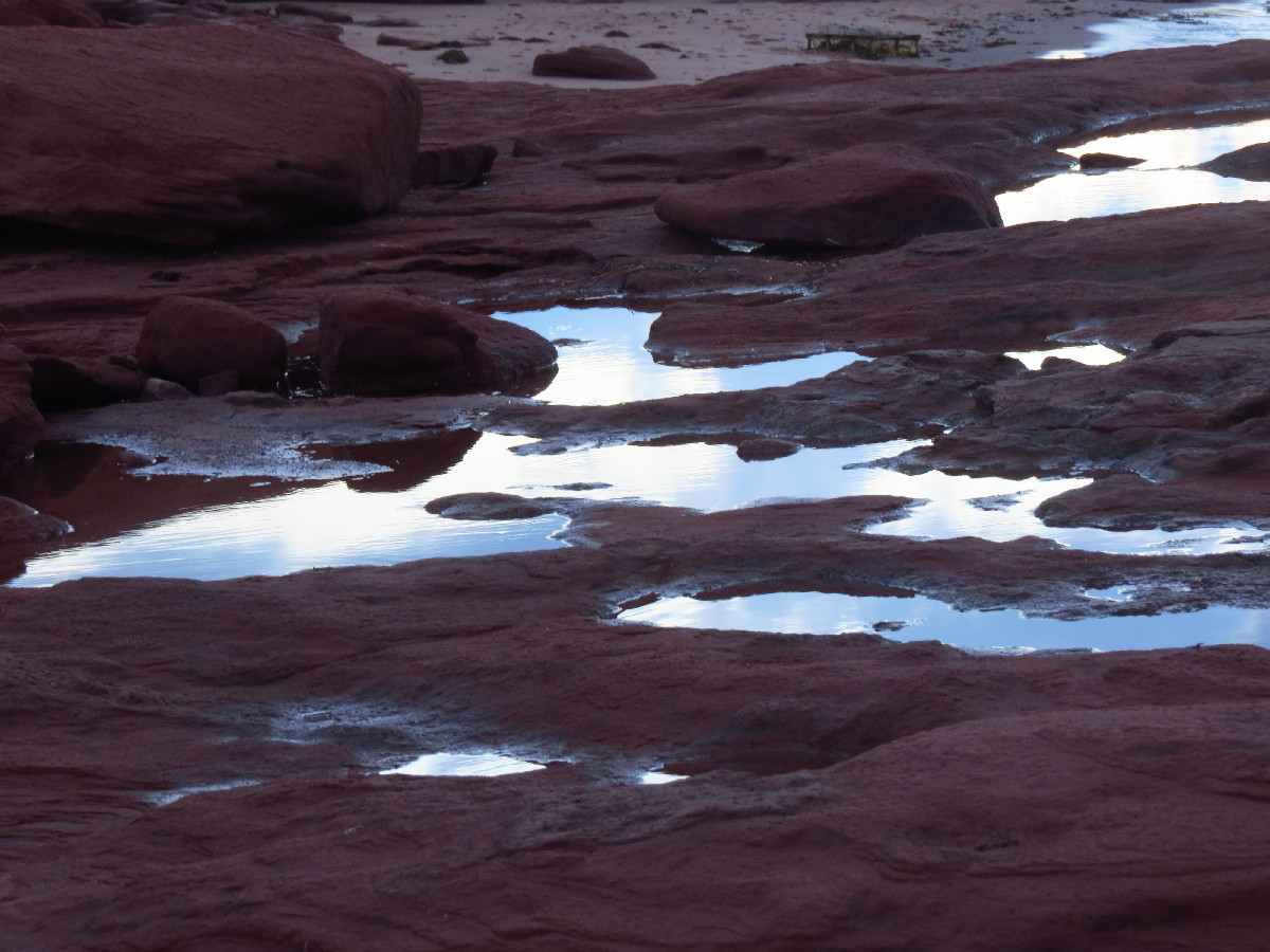 Clouds reflected in tide pools, Campbell's Cove, PEI