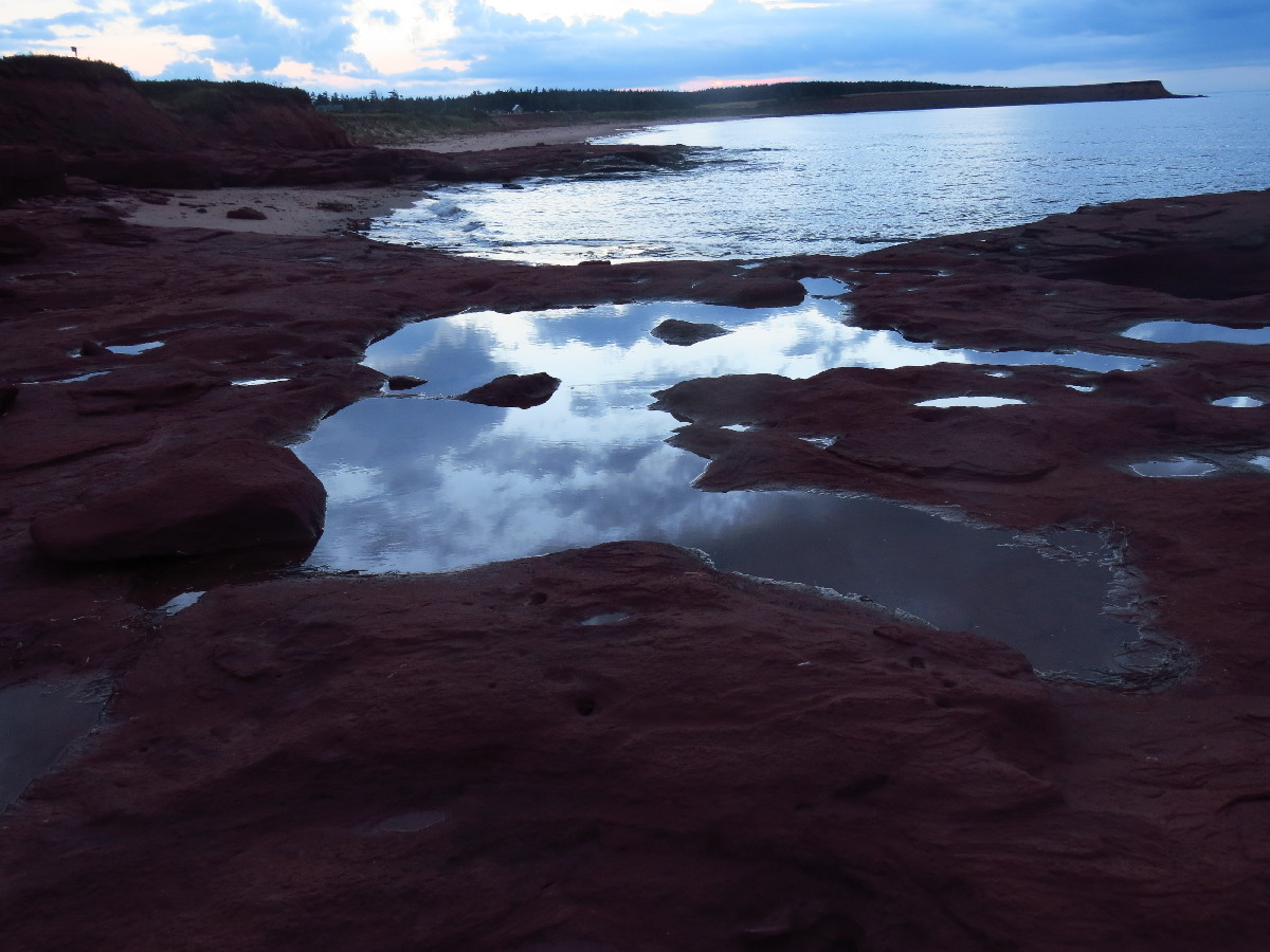 Sky reflection in tide pools, campbell's Cove, PEI