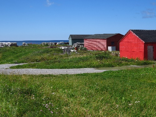 Sally's Cove in red, Gros Morne coast