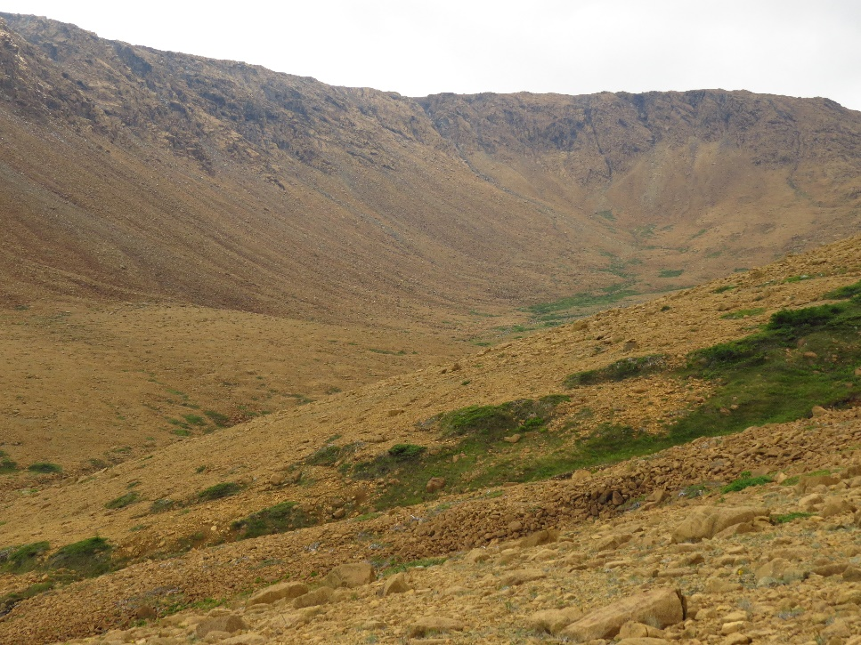 Raw planetary materials, The Tablelands, NL
