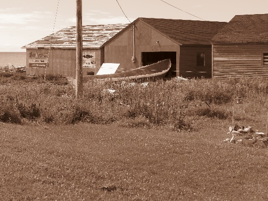A boat drawn out for use at Sally's Cove, Gros Morne coast