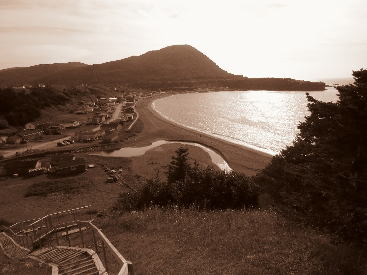 Trout river bay and town in sepia, NL