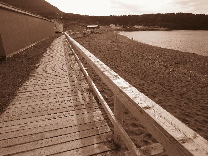 Trout River's boardwalk , NL