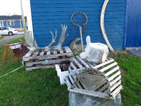 Whale bones and moose antlers, Trout River, Newfoundland