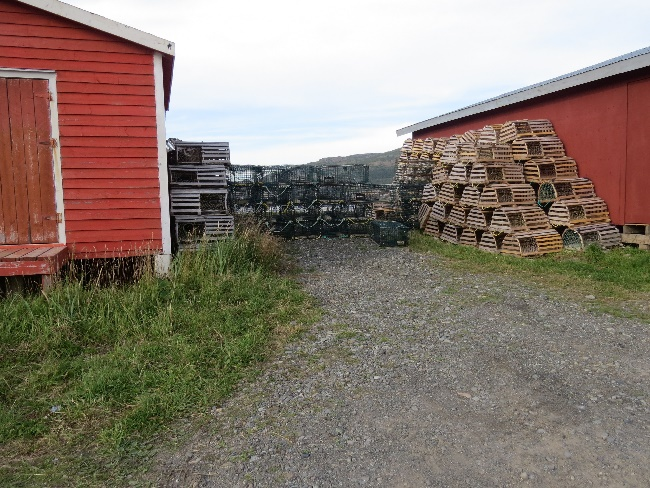 Lobster traps, Trout River, Newfoundland