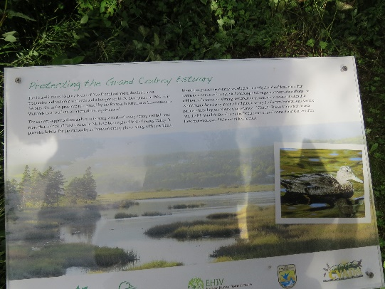 C:\Users\Orit\Pictures\US-Canada trip 2016\Canada - first trip\NewFoundLand - Gros Morne\Curdoy's wetland park on way to ferry\IMG_3964.JPG