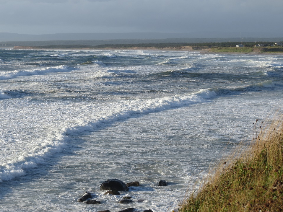 Waves and grasses, NFL Atlantic shore
