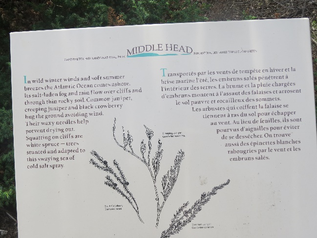 Plant survival on Middle Head Peninsula, Cape Breton