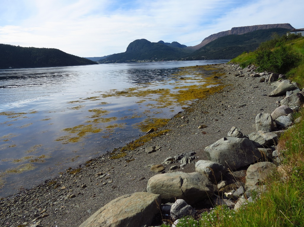 Along the beach, Woody Point, NFL