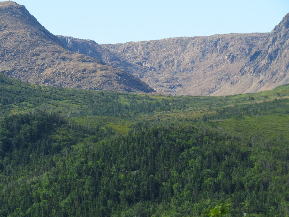 View of the tablelands from hill above Woody Point. NL