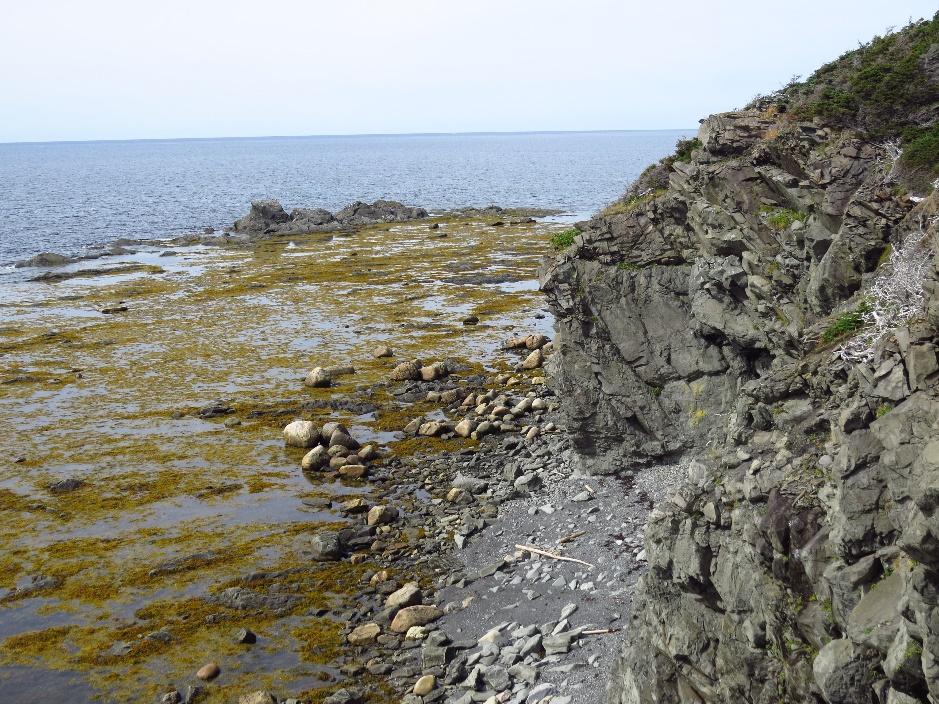 The rocky beach at Lobster Cove Lighthouse, Gros Morne, NL