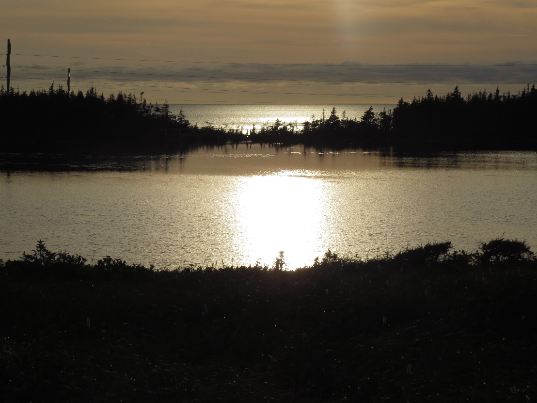 C:\Users\Orit\Pictures\US-Canada trip 2016\Canada - first trip\NewFoundLand - Gros Morne\Berrry's pond\IMG_3725.JPG
