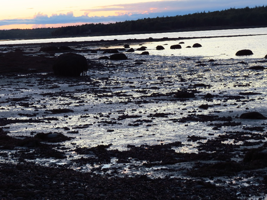 Play of colors in water as Hadley's Beach sinks into night, Mount Desert Island