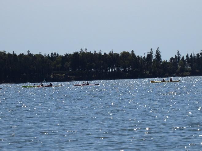 Kayaking , MDI, ME