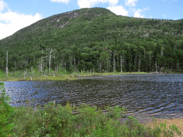 Second Greeley Pond vista, NH