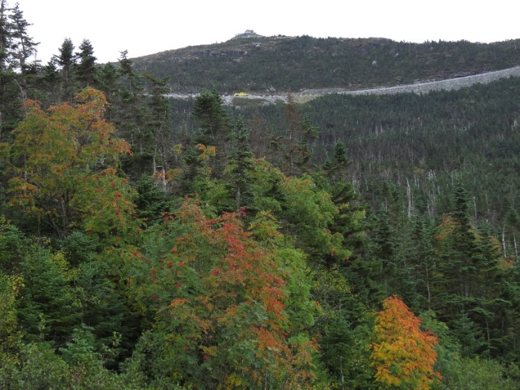 Lookout to Castle, Mount Whiteface, NYS