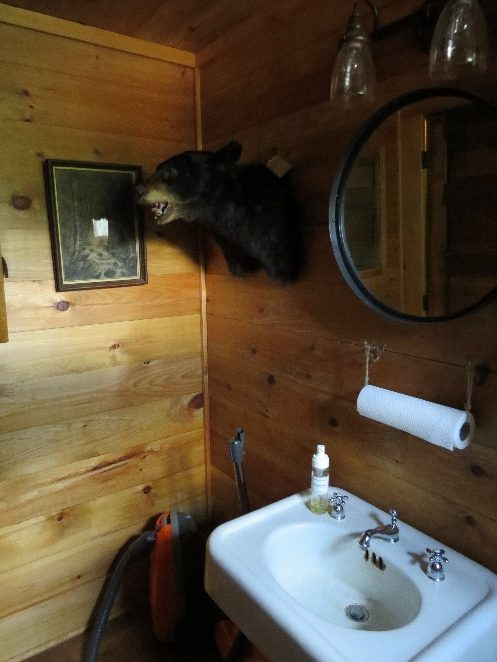 Bear's head greets you in the  bathroom, Keene's furniture store