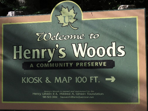Henry Woods trailhead, Lake Placid area, NYS