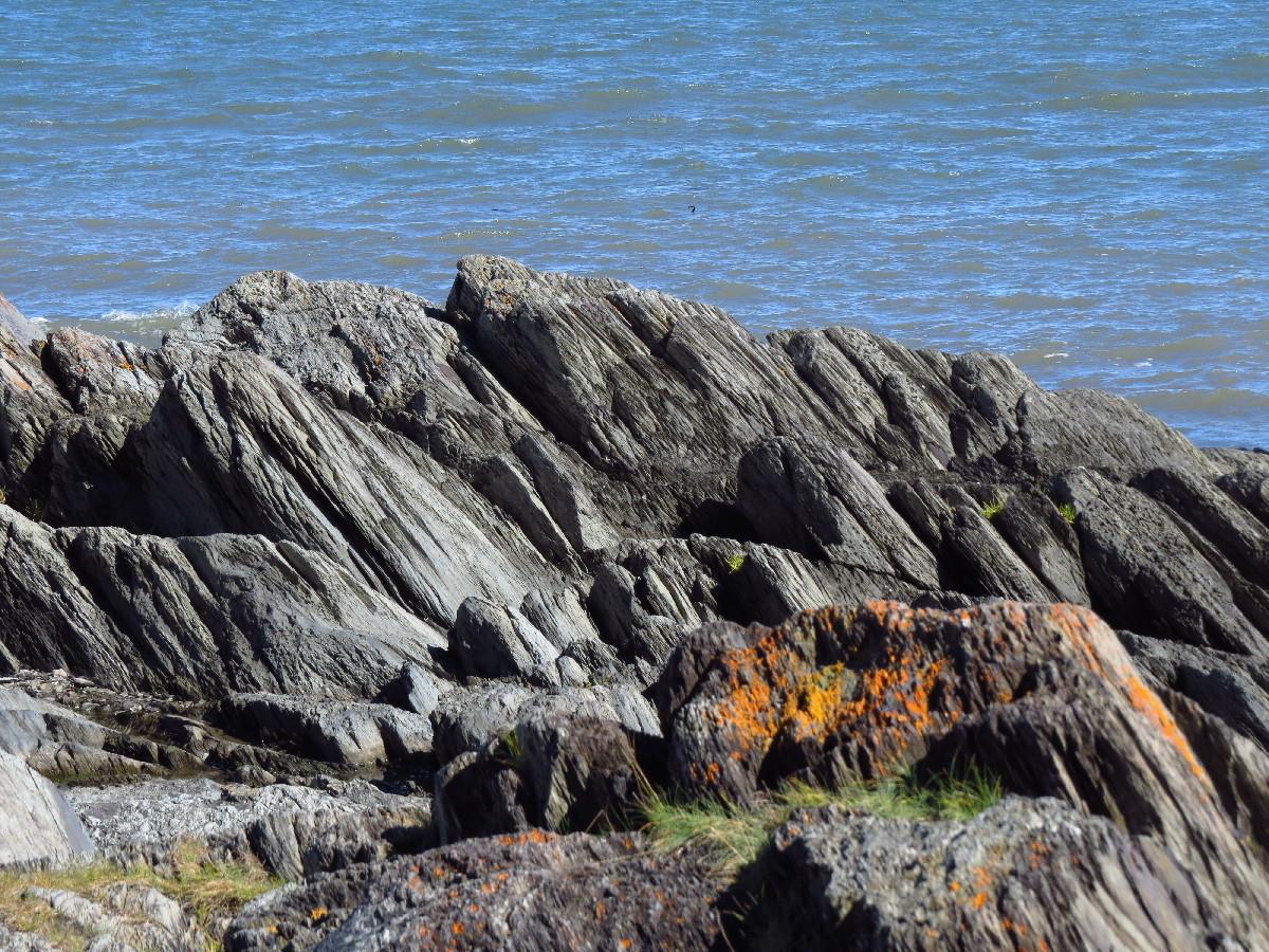 Sea rocks with lichen, Les Anses, Parc National Du Bic trails, Quebec