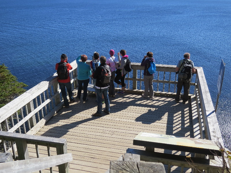 Whale watching at Land's End, Forillon National Park, QC, Gaspe