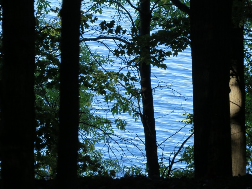 View over river from Eel Bay Trail