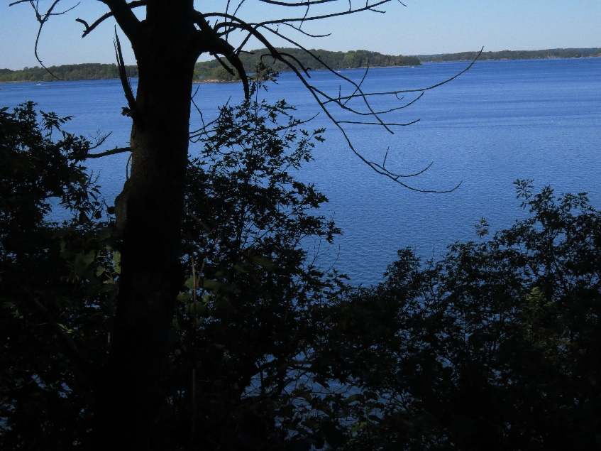 An Eel Bay Trail vista, Wellesley Island Nature Center