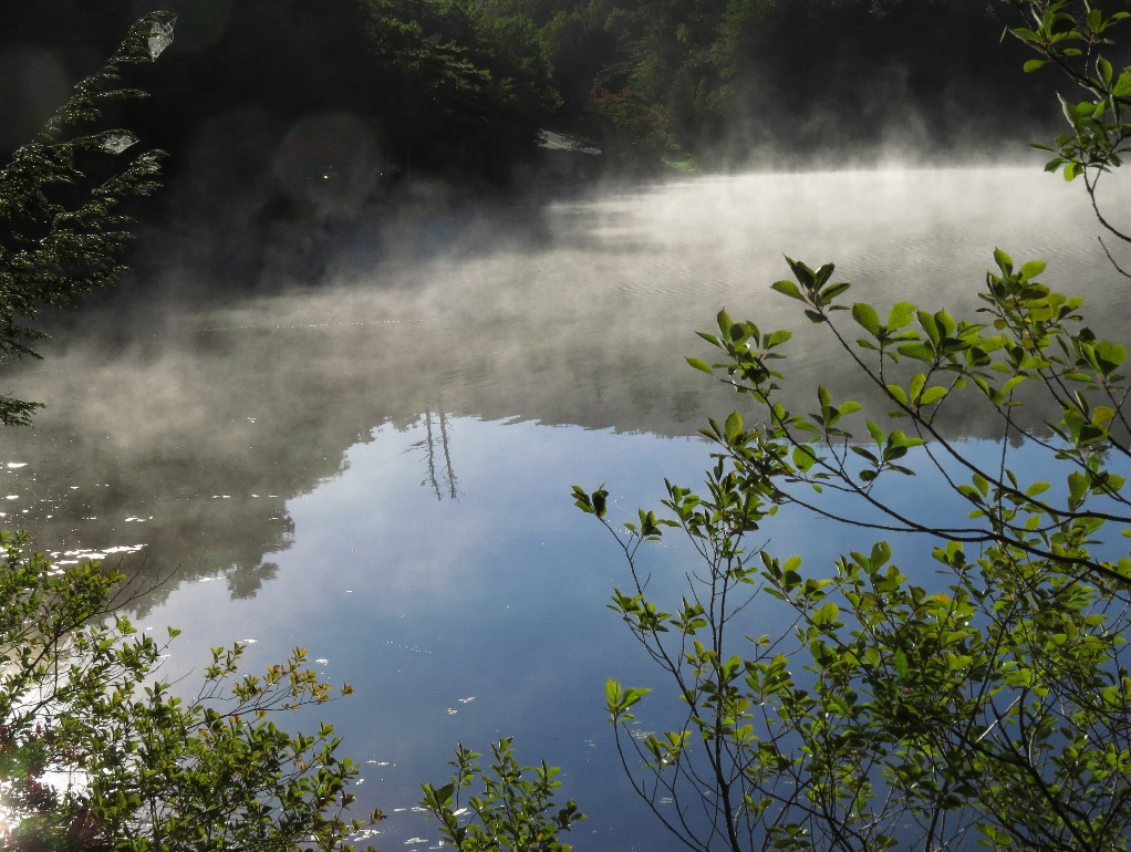 Mists over Lake Jordan surface, Acadia National Park, Maine