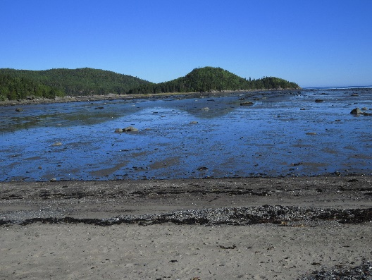 Low tide on exiting parc near visitor center