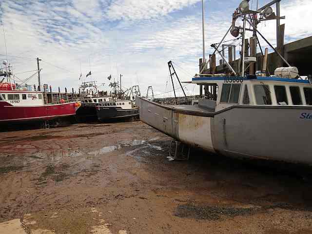 Boats stranded low tide, Alma, NB