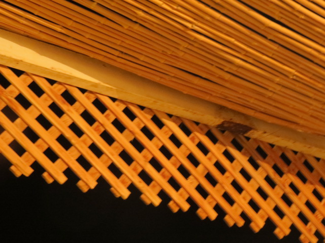 Bamboo pergola with grid, Eilat nights
