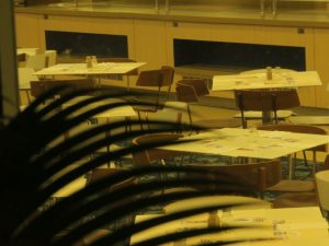 Night restaurant awaiting customers, Eilat