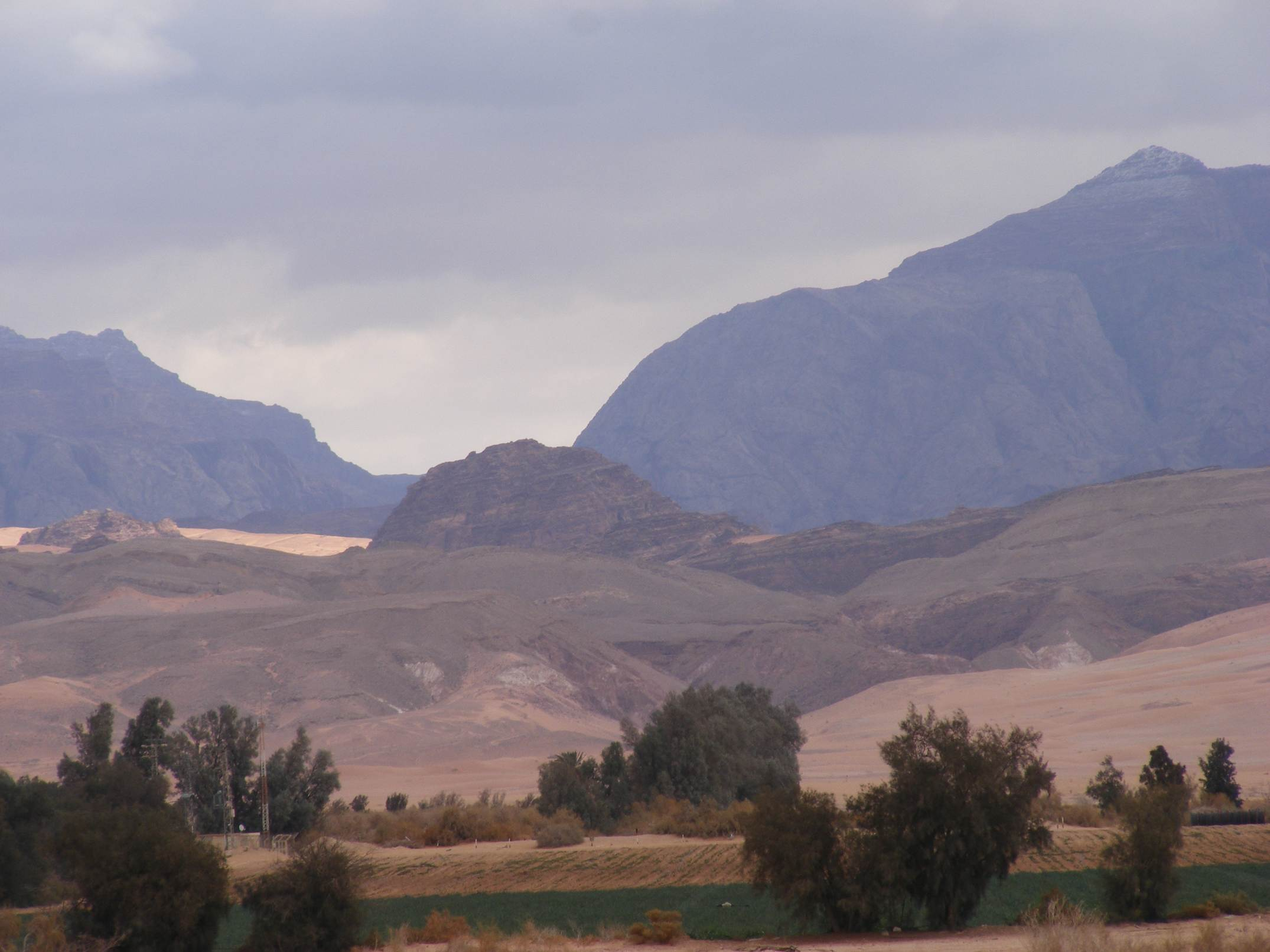 Light and shade in Arava valley with trees