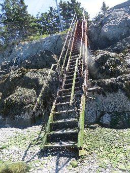 Campobello tides - algae-covered ladder to tidal ford , Quoddy Head, Campobello, NB