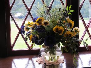 Flowers in window, Roosevelt Cottage