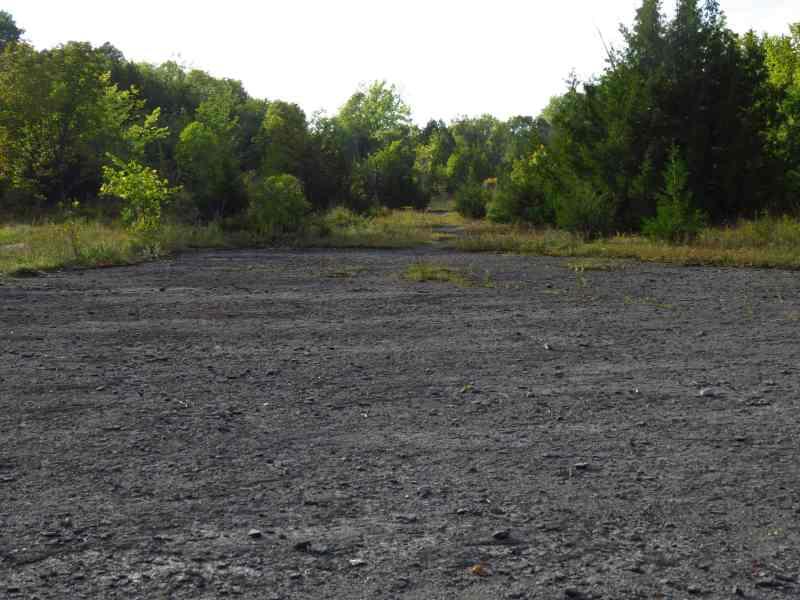 Raw bedrock, Fisk Quarry Preserve, La Motte Island, VT