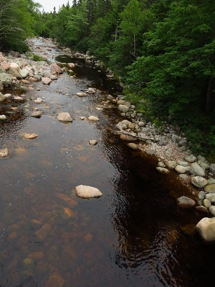 And its rivers run red. Cape Breton's east coast