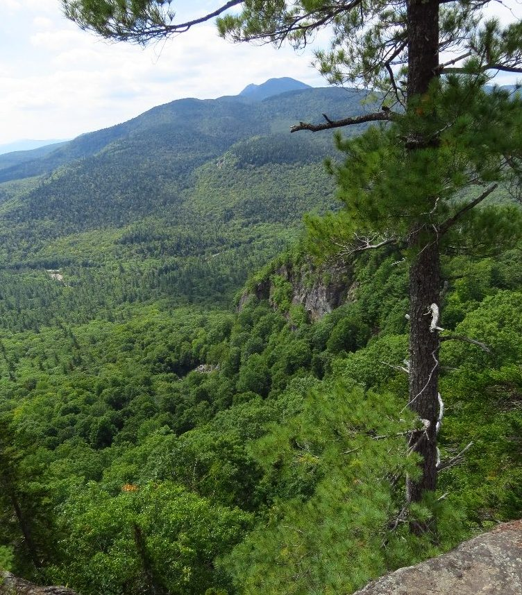 Vista from the ledges, Boulder Loop Trail, NH