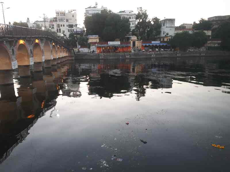 Flowers and garbage on Udaipur river at dusk time