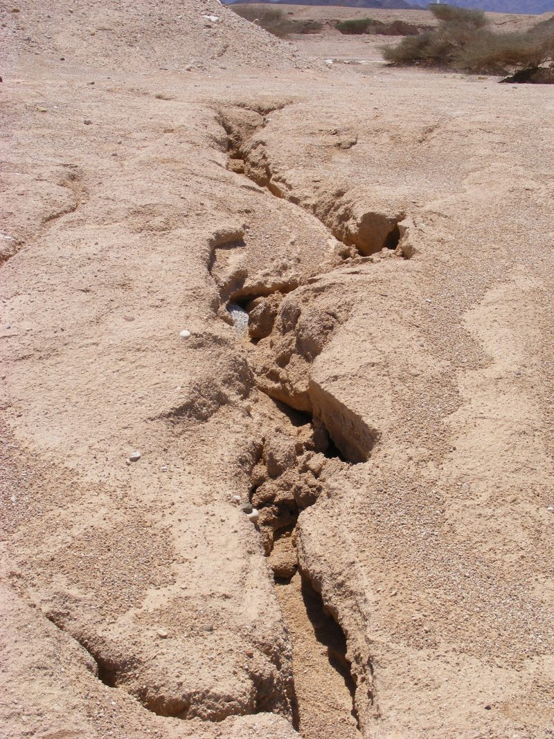 Cracks in mud by reservoir near Eilat. Nov 2013